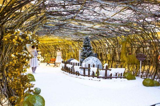 بهجة الاحتفال مع مهرجان الشتاء الرائع من برجمان