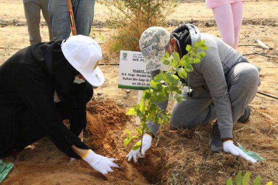 مجموعة عمل الإمارات للبيئة تزرع 2,000 شجرة