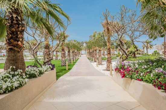 Revel in a Family Summer Escapade with your Fur Buddy at Dhafra Beach Hotel